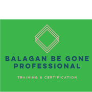 Professional Organizing Course By Balagan Be Gone
